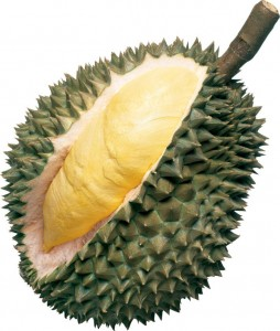Durian fruit