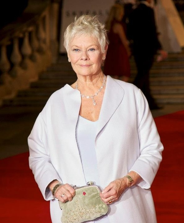 Judi Dench at the premiere of Skyfall at London's Royal Albert Hall