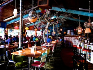Lynns Paradise Cafe Closing