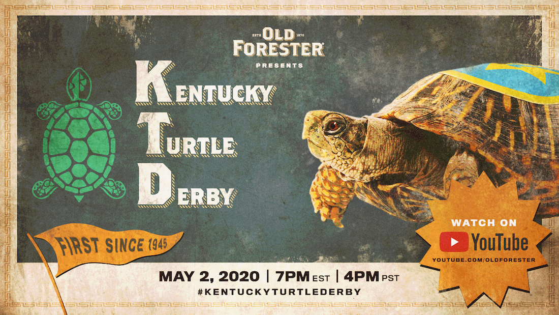 Kentucky Turtle Derby Race